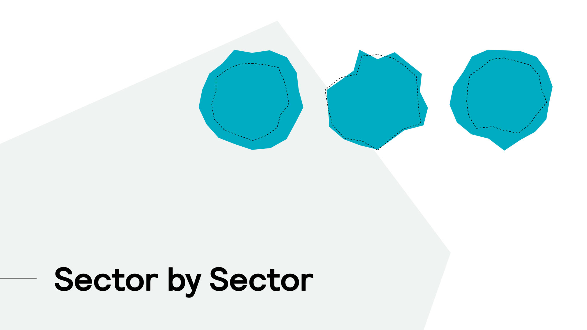 Sector by Sector Focus