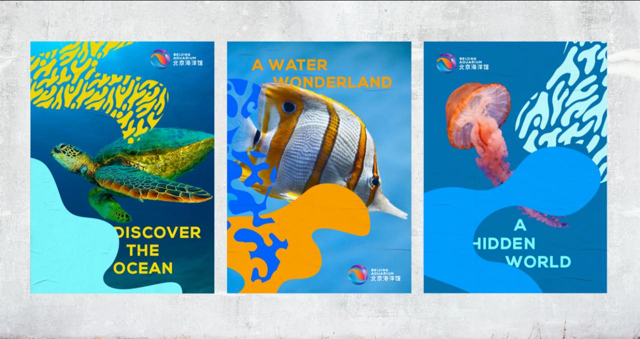 FutureBrand Asia-Pacific win Gold for Beijing Aquarium at the Transform Awards APAC